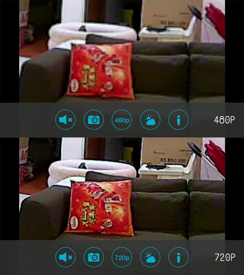 DLink IP Camera